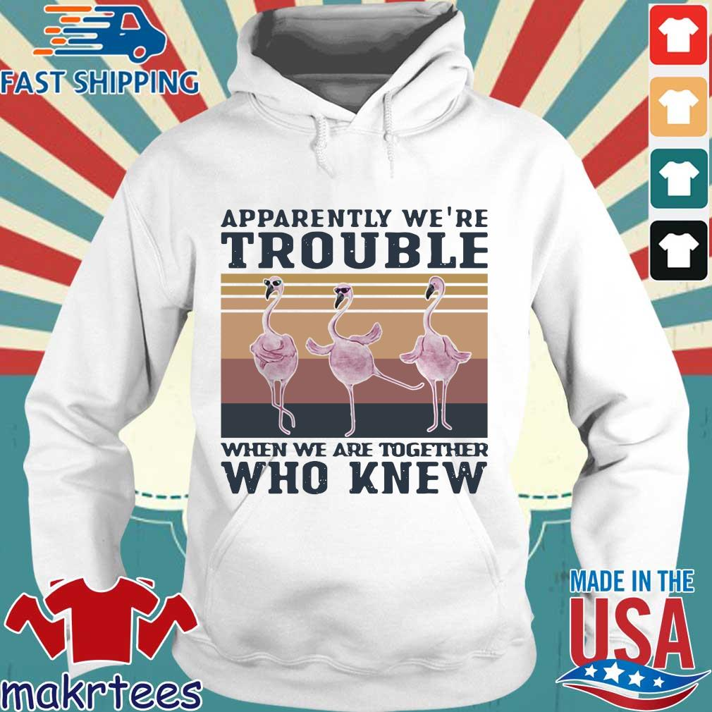 Flamingo Apparently Were Trouble When We Are Together Who Knew Vintage Shirt Hoodie trang