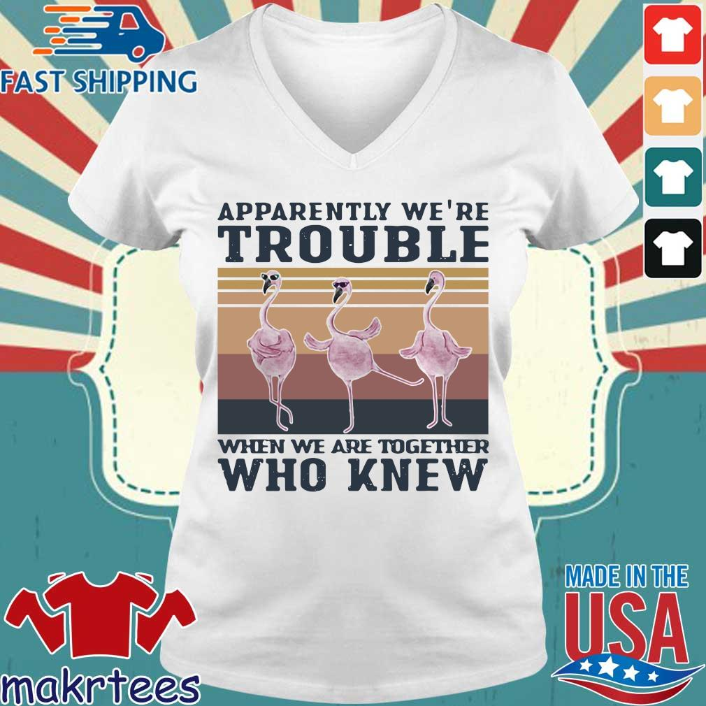 Flamingo Apparently Were Trouble When We Are Together Who Knew Vintage Shirt Ladies V-neck trang
