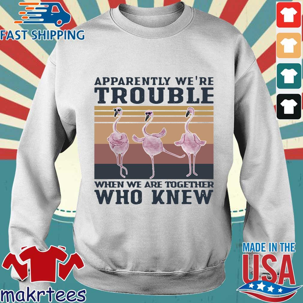 Flamingo Apparently Were Trouble When We Are Together Who Knew Vintage Shirt Sweater trang
